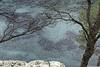 Calanque port miou 1L8A8731_DxO (jmlpyt) Tags: côtedazur porquerolles plage france merméditerranée pin mer littoral arbre alep rivage été île beauté ciel côterocheuse destinationdevoyage eau horizon lumièredusoleil nature paradisiaque paysage paysages photographie rocher sanspersonnage scènetranquille sport stationdevacances vague provencealpescôtedazur frenchriviera beach mediterraneansea pine sea coastline tree aleppo shoreline summer island beauty sky rockycoast traveldestination water sunlight idyllic landscape landscapes photography rock nopeople tranquilscene vacationresort wave portmiou marseille cassis
