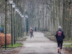 Trees and Lampposts (sander_sloots) Tags: trees lampposts people jogger bike jogging row straatverlichting wassenaar fietser diepte depth lantaarnpalen hogro lightronics sgr palen lampadaires armatuur lantern streetlamps mensen