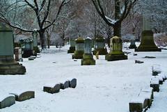 Graceland 12 (cbillups) Tags: gracelandcemetery charliebillupschicago cemetery chicago