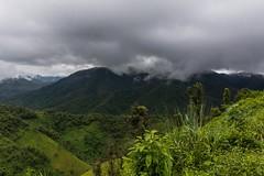 Po noční bouřce (zcesty) Tags: krajina hory vietnam27 vietnam dosvěta điệnbiên vn