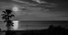 jlvill  072  Atardecer  b&n (jlvill) Tags: bn bw blanconegro monocolor ocaso atardecer crepusculo mar playa nubes 1001nightsmagiccity 1001nights