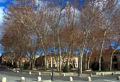 ALCALA DE HENARES MADRID 7780 27-1-2018 (Jose Javier Martin Espartosa) Tags: alcaladehenares wordheritagesite patrimoniodelahumanidad madrid españa spain