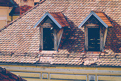 (c) Wolfgang Pfleger-8047 (wolfgangp_vienna) Tags: ljubljana slovenien slovenia rooftop roof dach windows