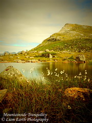 Mountainside Tranquility (liamearth) Tags: earth loch lake shore sky clouds mountain sceneic wilderness beautiful view outdoor water grass western landscape wild lofoten norway arctic circle traveling moskenesøya real life camping rock serene river mountainside reine bay crag snow pond sea