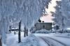 Lottala, Soini (lehtonenh) Tags: nikon d7000 dx35 talvi winter lumi rawtherapee suomi soini finland lottala