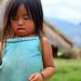Little Girl With Crab, Luang Prabang Laos