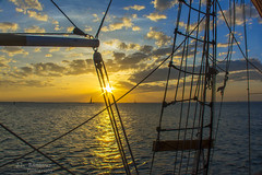 Key West Sunset Sailing (J.L. Ramsaur Photography) Tags: jlrphotography nikond5200 nikon d5200 photography photo keywestfl thekeys monroecounty florida 2014 engineerswithcameras floridakeys photographyforgod thesouth southernphotography screamofthephotographer ibeauty jlramsaurphotography photograph pic islandtime keywest conchrepublic southernmostcityinthecontinentalus southernmostcity keywestflorida homeofthesunset tennesseephotographer cayohueso isleofbones boneisland thelastresort sunset sun sunrays sunlight sunglow orange yellow blue keywestsunsetsailing keywestsunsetcruise keywestsunsetsailingcruise keywestsunset bluesky deepbluesky beautifulsky whiteclouds clouds sky skyabove allskyandclouds wherethemapturnsblue ocean bluewater blueoceanwater sea gulfofmexico ropes sailing sunsetsailing sunsetcruise landscape southernlandscape nature outdoors god'sartwork nature'spaintbrush