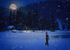 :: snowy walk :: (mjcollins photography) Tags: night snow blue hour low light composite winter moon woman lady walking tae kwon do black belt