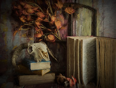 SL170218 Sheep Skull 03.jpg (Sh4un65_Artistry) Tags: painteffect books plants textured fungi leaves painterly paintedphoto topaz digitalart digitalpainting topazimpression topaztextureeffects skull stilllife windowsanddoorsetc artwork sheepskull
