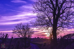 Sunset drive 3, Scotland (picsbyCaroline) Tags: dusk sunset sky beautiful sun purple light drive car scotland landscape
