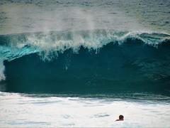 Warning - no swimming (thomasgorman1) Tags: surf wave waves canon swimmer man hawaii oahu banzai pipeline curling curl crashing spray pacific island