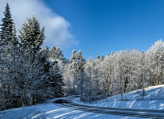 Snow day (docoverachiever) Tags: bluesky trees road winter snow scenery willamettevalley landscape rural fence oregon salem