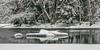 Gysinge iceberg (sussexscorpio) Tags: 2018 february gysinge riverdal riverdalalven sussexscorpio sweden frozen iceberg reflection reflections river snow trees water winter dalälven färnebofjärden park färnebofjärdennationalpark star freezing tree branches snowladen