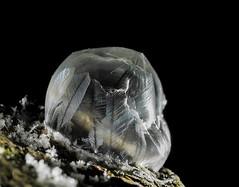 P2060679-das Ende-The end (Bine&Minka2007) Tags: soapbubbles frost frosty frostig frozen gefroren minustemperatur