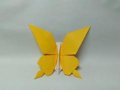 Butterfly by saku (Zephyr Liu) Tags: origami kami paper saku butterfly
