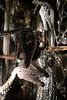 NYC Christmas Windows (Samicorn) Tags: nikon nyc manhattan christmas windows displays holidays stores retail fashion couture mannequins mannequin newyorkcity fifthavenue shopping gowns bergdorfgoodman bergdorf diamonds rhinestones shiny dinosaurs skeletons fossils museumofnaturalhistory