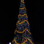 Epcot Christmas 2017-39.jpg thumbnail