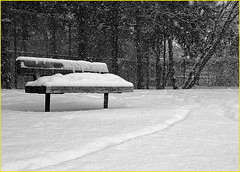 171229 Toronto Snowfall (13) (Aben on the Move) Tags: snow winter cold snowfall toronto canada willowdale