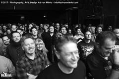 2017 Bosuil-Het publiek bij The Road Home en Vandenberg's Moonkings 11-ZW
