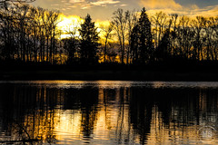 Sunset in Eugene, OR (marinstuart) Tags: eugene oregon nature uo ducks plants graffiti fall reflection photography beautiful sunset sky water droplets
