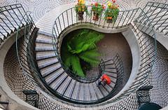 première fois que ... (jean-marc losey) Tags: usa california sanfrancisco escalier stair fougères sièges d700