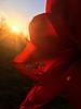 Amaryllis And The Sunset... (Diana Kae) Tags: missouri amaryllis red flower bloom blooming sunset upclose kansascity dianakae dianawhite dianaobryan usafloral floral beautiful unitedstates northamerica usa intheyard