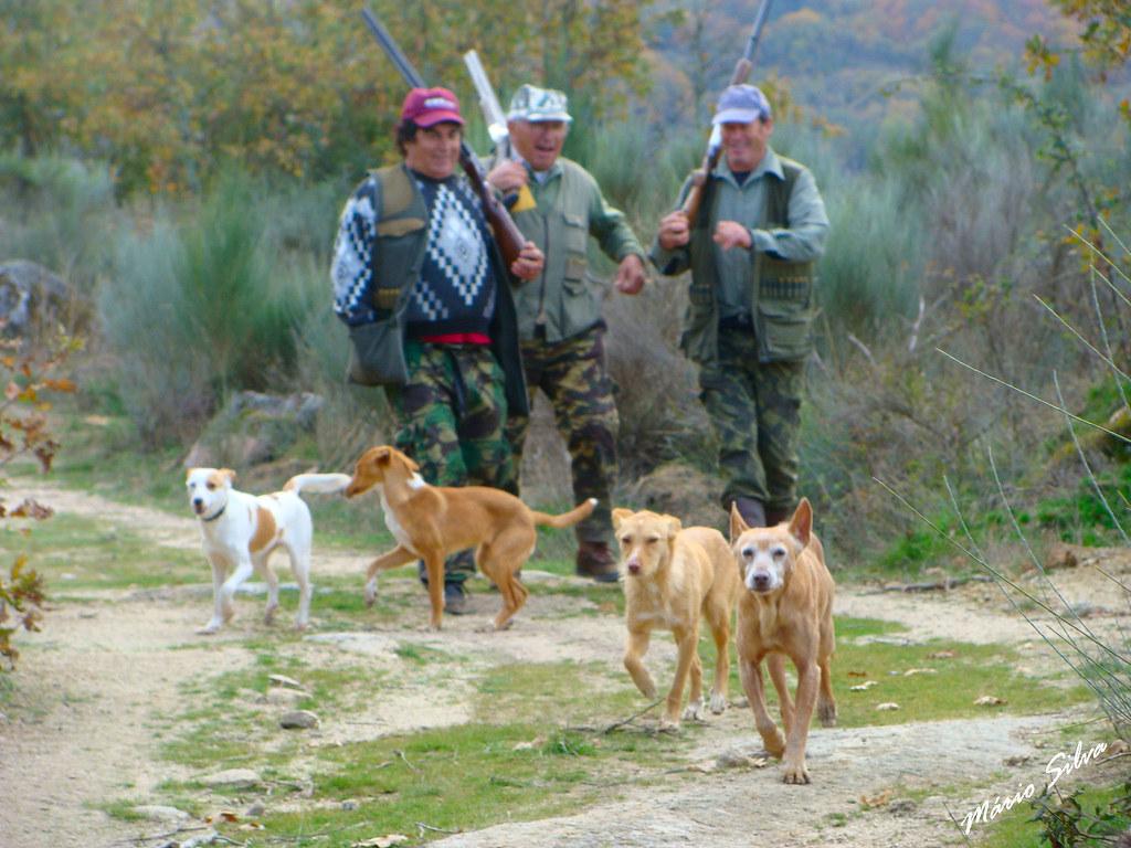 Águas Frias (Chaves) - ... os caçadores (sem caça) e os cães ...