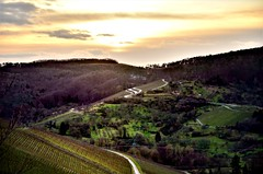 January Sunset (DrQ_Emilian) Tags: sun sunlight light color outdoors landscape view sky clouds dawn evening mood vineyards hills travel stetten remstal kernen badenwürttemberg germany europe explore 2018 january roads details