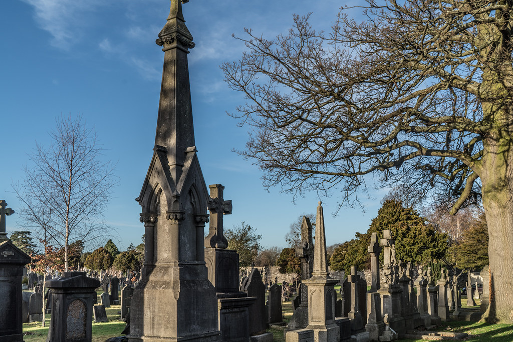 VISIT TO GLASNEVIN CEMETERY IN DUBLIN [FIRST SESSION OF 2018]-135096