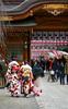 Each kimono pattern (sapphire_rouge) Tags: kimono 東京 振袖 shrine 着物 晴着 lady tokyo 大國魂神社 fuchu wichi 府中 japan 成人式