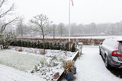 eerste sneeuw (doevos) Tags: hoenderloo sneeuw