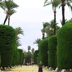 Parque Genovese thumbnail