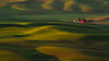Red House Over Yonder (carolina_sky) Tags: washington unitedstates us redhouse redbarn palouse fields farmland rolling hills green pastoral landscape sunrise pentaxk1 pentax150450mm pixelshift skymatthewsphotography steptoebutte