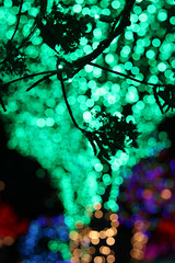 negative space and bokeh (greyloch) Tags: lights holiday decorations unedited lowlight 2017 canonrebelt6s canonef50mm bokeh