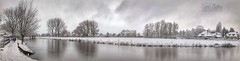 Winter Panorama, Odijk, Netherlands - 0425 (HereIsTom) Tags: webshots travel europe netherlands holland dutch view nederland views you sony cybershot hx9v nature sun tourists cycle vakantie fietsvakantie cycling holiday bike bicycle fietsen winter december kromme wonderland plus 8 cold christmas weather apple 2017 landscape water hike snow walk surreal river odijk iphone rijn kerst snowy 10 ios 11 trees