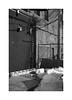 (billbostonmass) Tags: foam 100 ddx voigtlander r3a rangefinder 40mm nokton 14 mc film epson v800 massachusetts 2013