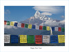 "Windpferde / Wind Horses (Henry der Mops) Tags: 90a5936 windpferde windhorses gebetsfahnen gebetsflaggen buddhismus prayerflags nepal himalaya himalayas machapuchare ""fischschwanz"""