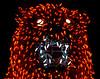 Bear In Mind (oybay©) Tags: bear electricbear lights light electric electriclights color colour colors colorful bright vivid phoenix arizona phoenixzoo zoolights zoo display unique unusual macro