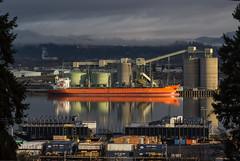 Winter Sunshine (Dave In Oregon) Tags: ship barge longviewwashington portoflongview sunshine morning oregon rainieroregon winter columbiariver sky clouds outside