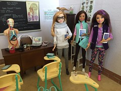 5. Biology = favorite class (Foxy Belle) Tags: skipper doll babysitter inc baby sitter 2018 new mold handmade clothing knits leggings brunette blonde freckles hispanic friends collection barbie mattel classroom school science biology diorama dollhouse 16 scale playscale miniature