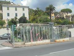 398 (en-ri) Tags: serra genova zena sony sonysti bogliasco piante grasse cactus vetro verde case buildings palma
