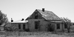 Seneca, New Mexico (unknown quantity) Tags: abandonedhouse corrugatedroof monochrome brokenroof peelingpaint barewood horizon vegetation shadows faded weathered blackandwhite brokenwindows deterioration
