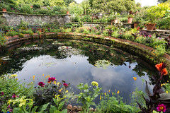Pond at Bodnant Gardens (Claire Young) Tags: 2017 august northwales snowdonia summer wales bodnant garden