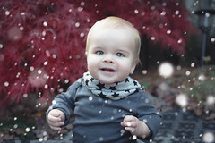 Will - 10.5 months old (Katherine Ridgley) Tags: toronto torontobaby baby babyboy babyfashion cutebaby snow snowflake maple red autumn fall redmaple japaneseredmaple outside outdoors
