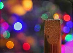 Painterly Stick ... (MargoLuc) Tags: macromondays stick theme wooden colourful bokeh macro