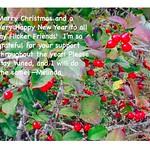 Christmas 2017 thumbnail