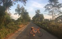 Myanmar, Ayeyarwady Region, Hinthada District, Lemyethna Township, Thone Set Village Tract (Die Welt, wie ich sie vorfand) Tags: myanmar burma surly crosscheck bicycle cycling hinthada ayeyarwady irrawaddy hinthadadistrict ayeyarwadyregion lemyethnatownship lemyethna aingthapyu thoneset