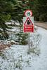 Squirrels! (Steve Samosa Photography) Tags: signpost balmoral scotland squirrel snow