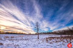 Winter sky (Kasia Sokulska (KasiaBasic)) Tags: alberta canada frozen winter cold fineart nationalpark landscape nature elkisland sunset weather clouds snow sky