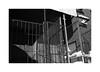 (billbostonmass) Tags: adox silvermax 100 film 129silvermax1100min68f fm2n 40mm ultron sl2 f2 epson v800 roxbury massachusetts